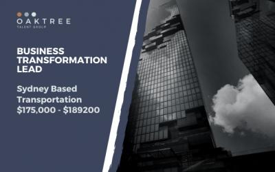 Business Transformation Lead