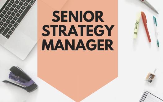 Senior Strategy Manager | Jobs Sydney